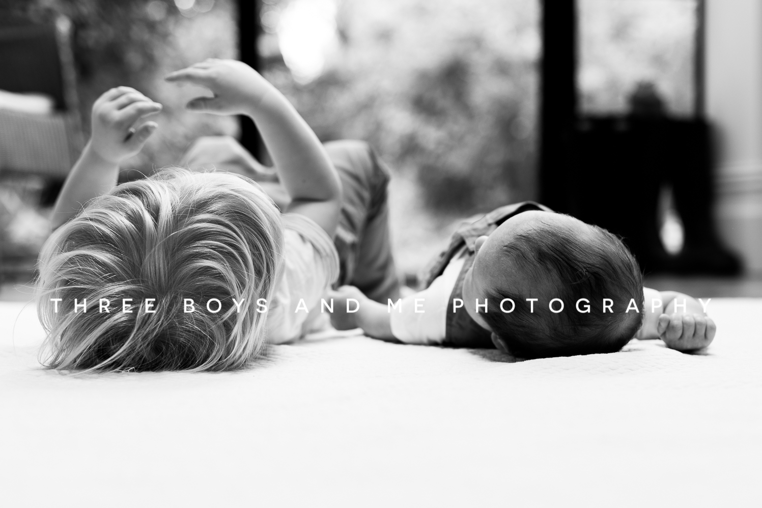Bexley Newborn photographer