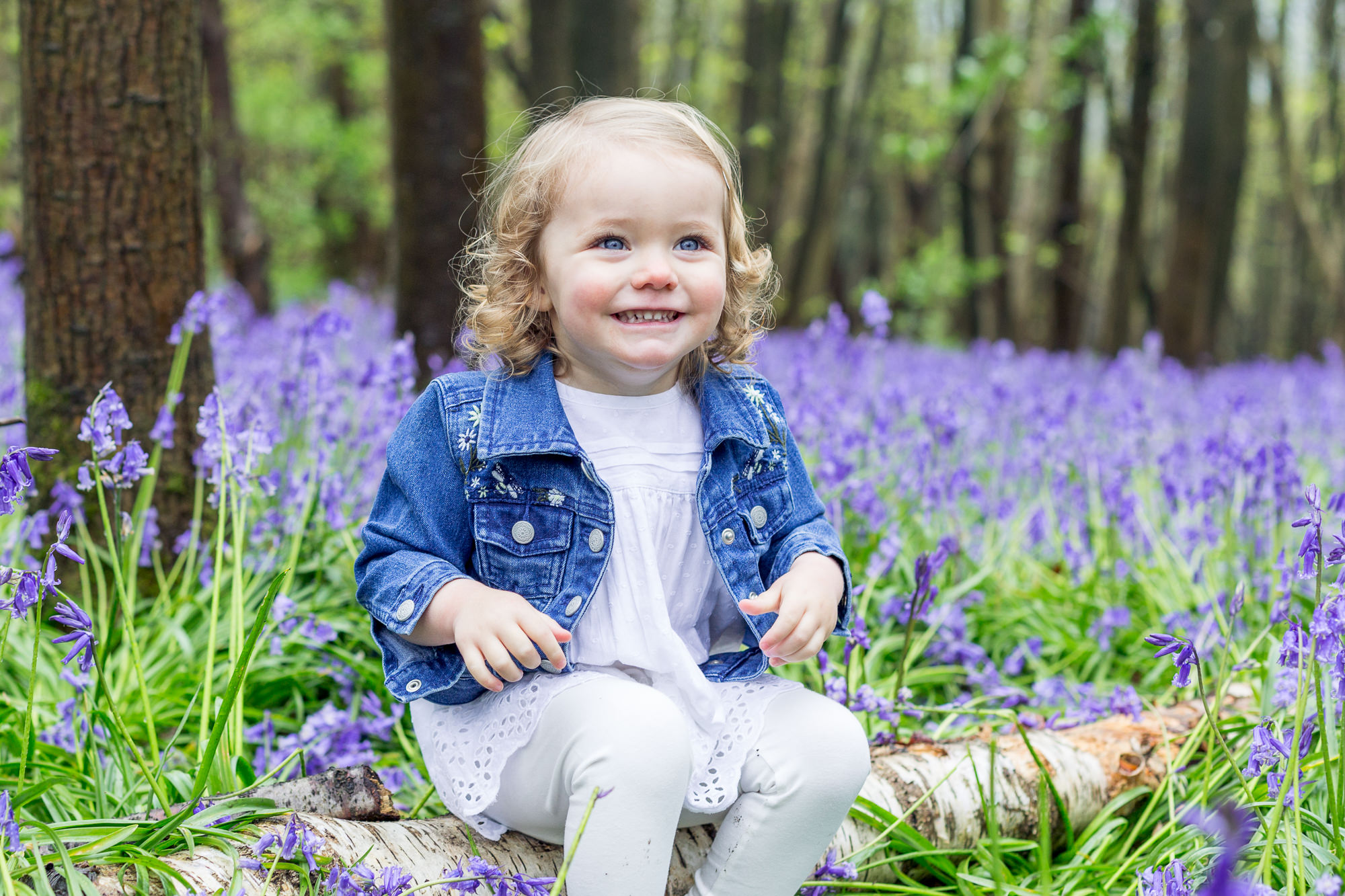 April 2019 – BLUEBELL MINI PHOTOSHOOTS DA2 AND TN15 LAST FEW SESSIONS AVAILABLE