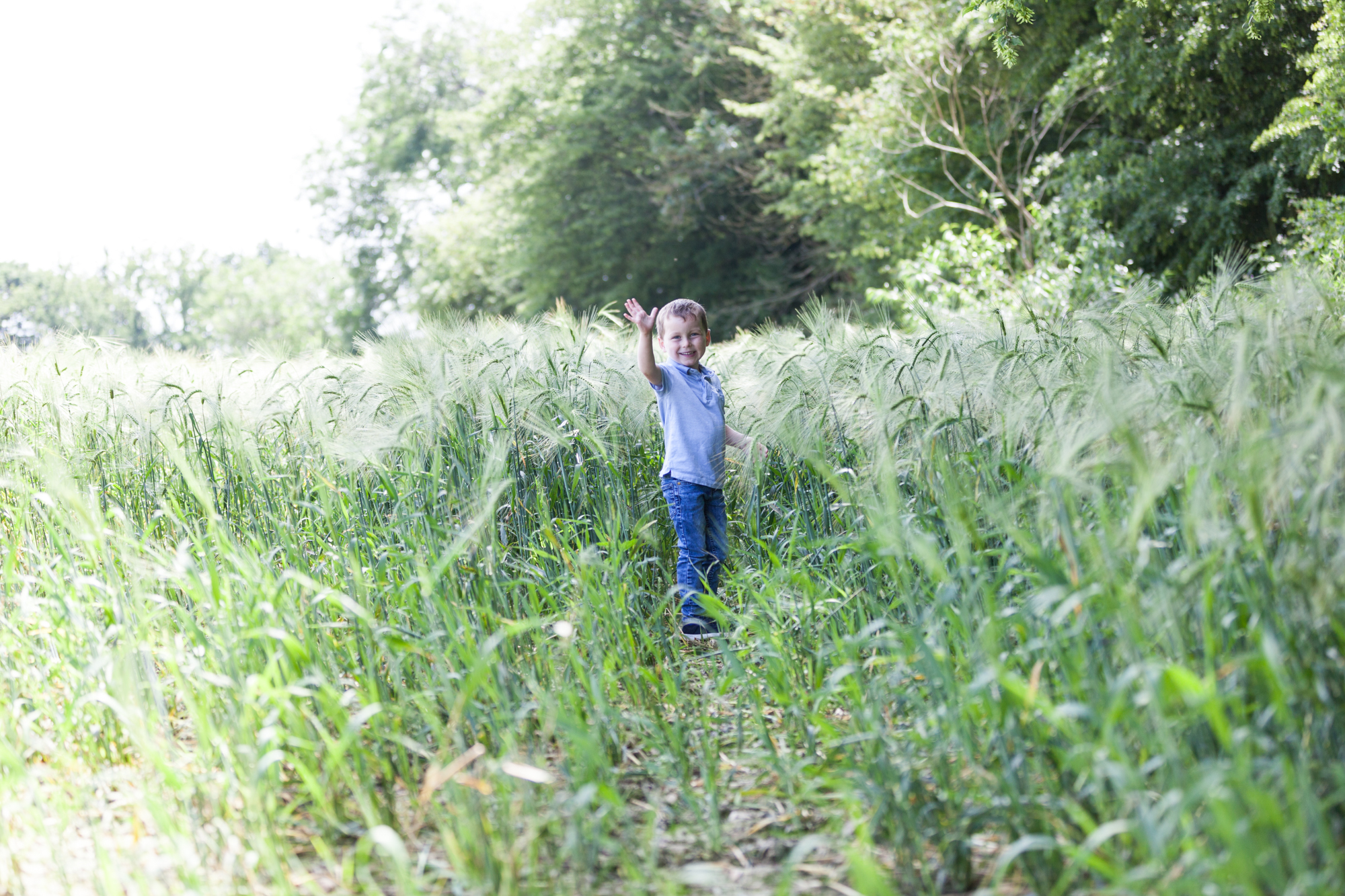 young boy standing in a corn field at his Bexley family photoshoot