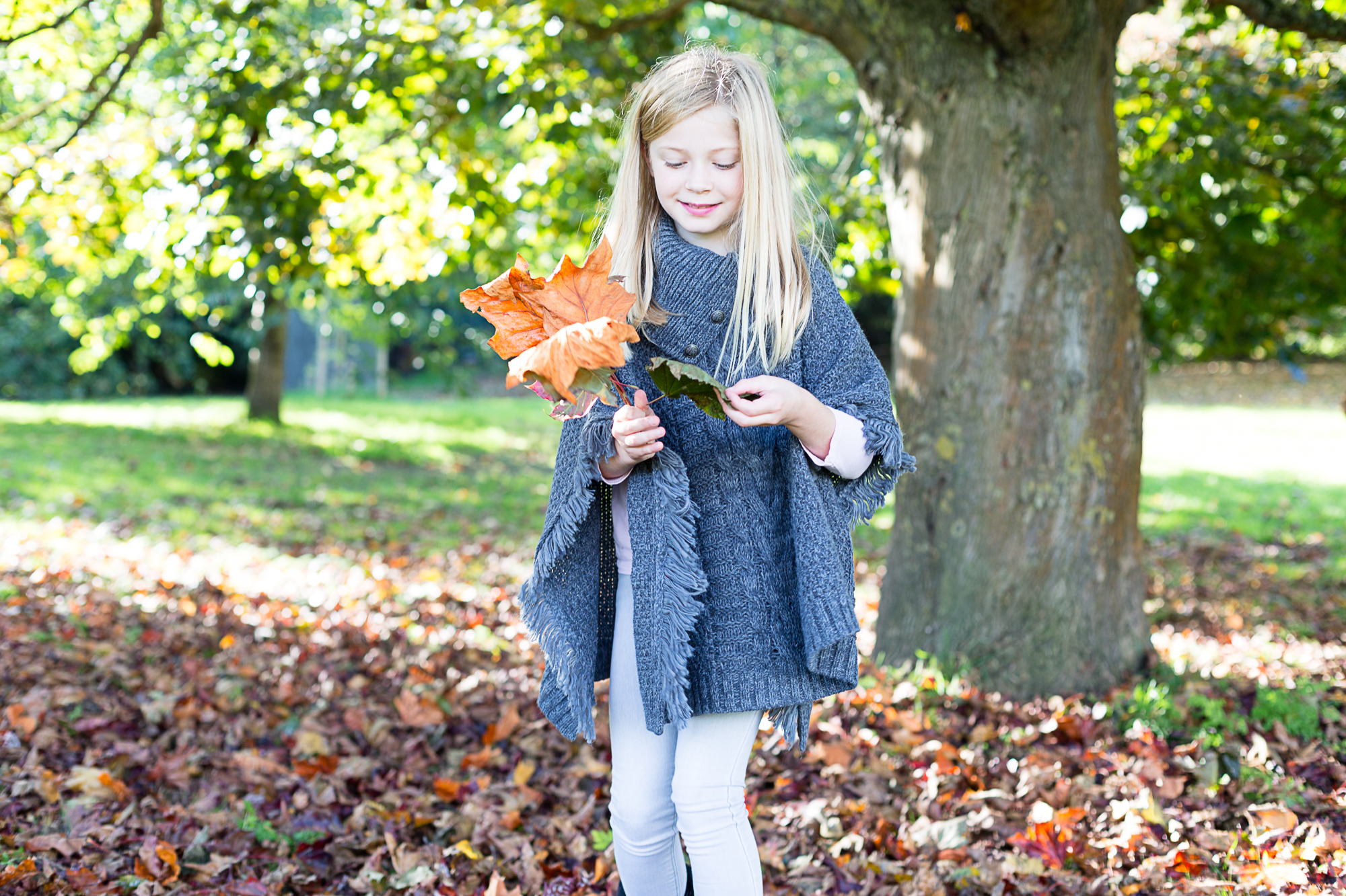 Autumn mini shoots, booking now open 2nd and 3rd November 2019