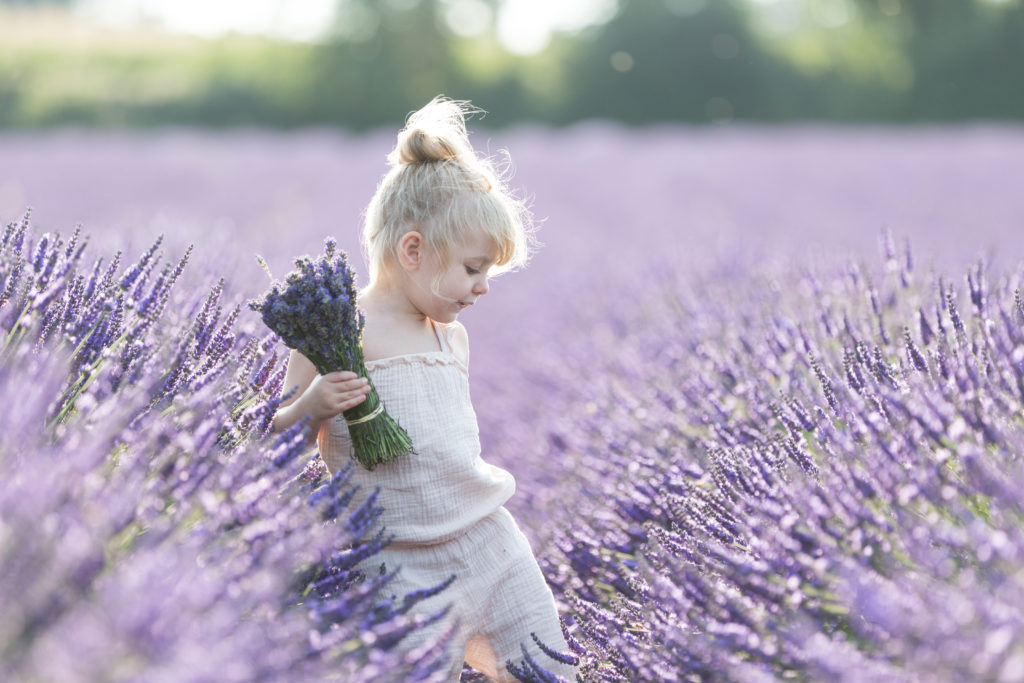 Lavender photographer Nina Callow 3B&ME photography London Kent
