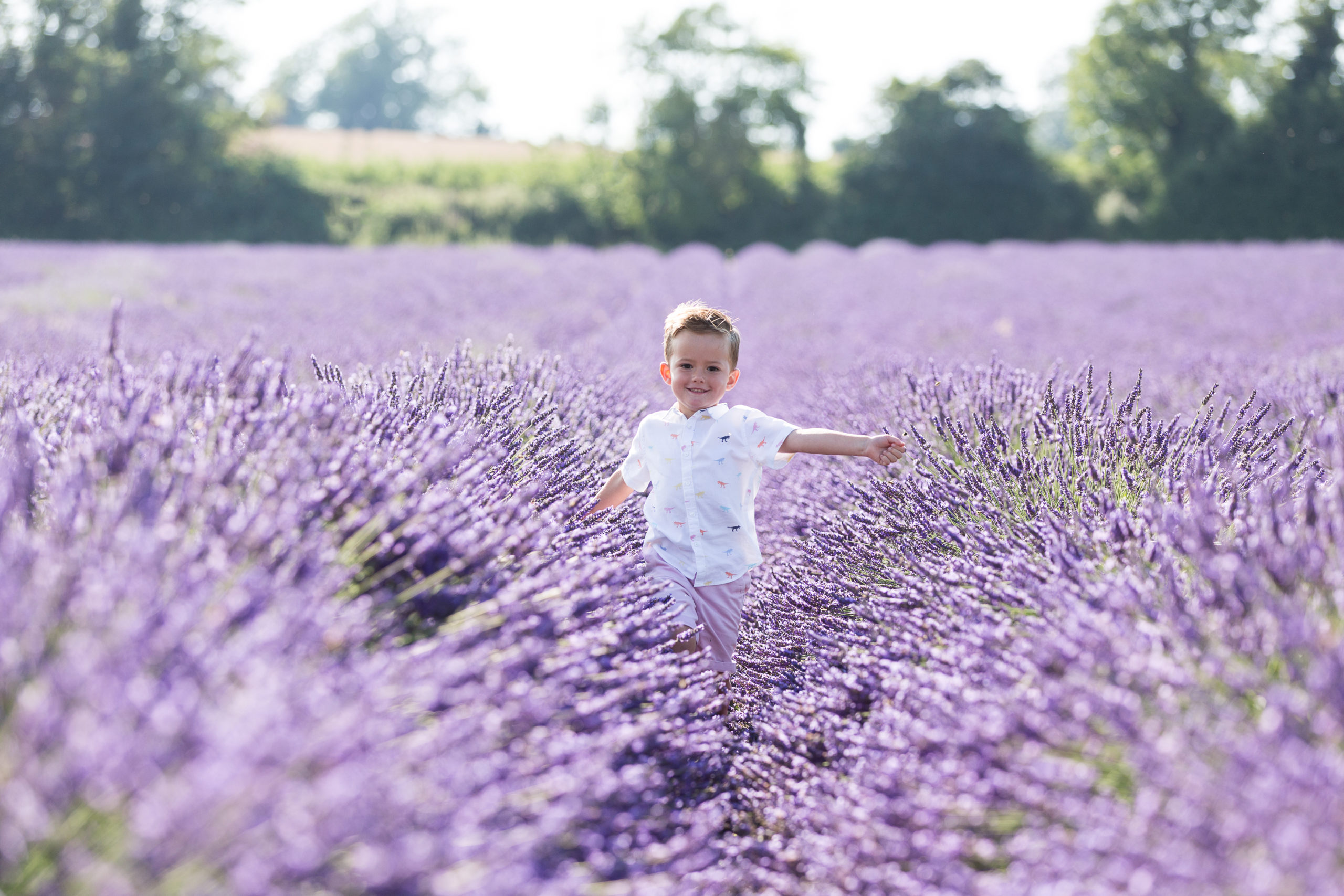 LAVENDER PORTRAIT SESSIONS 2020 – priority booking list now open