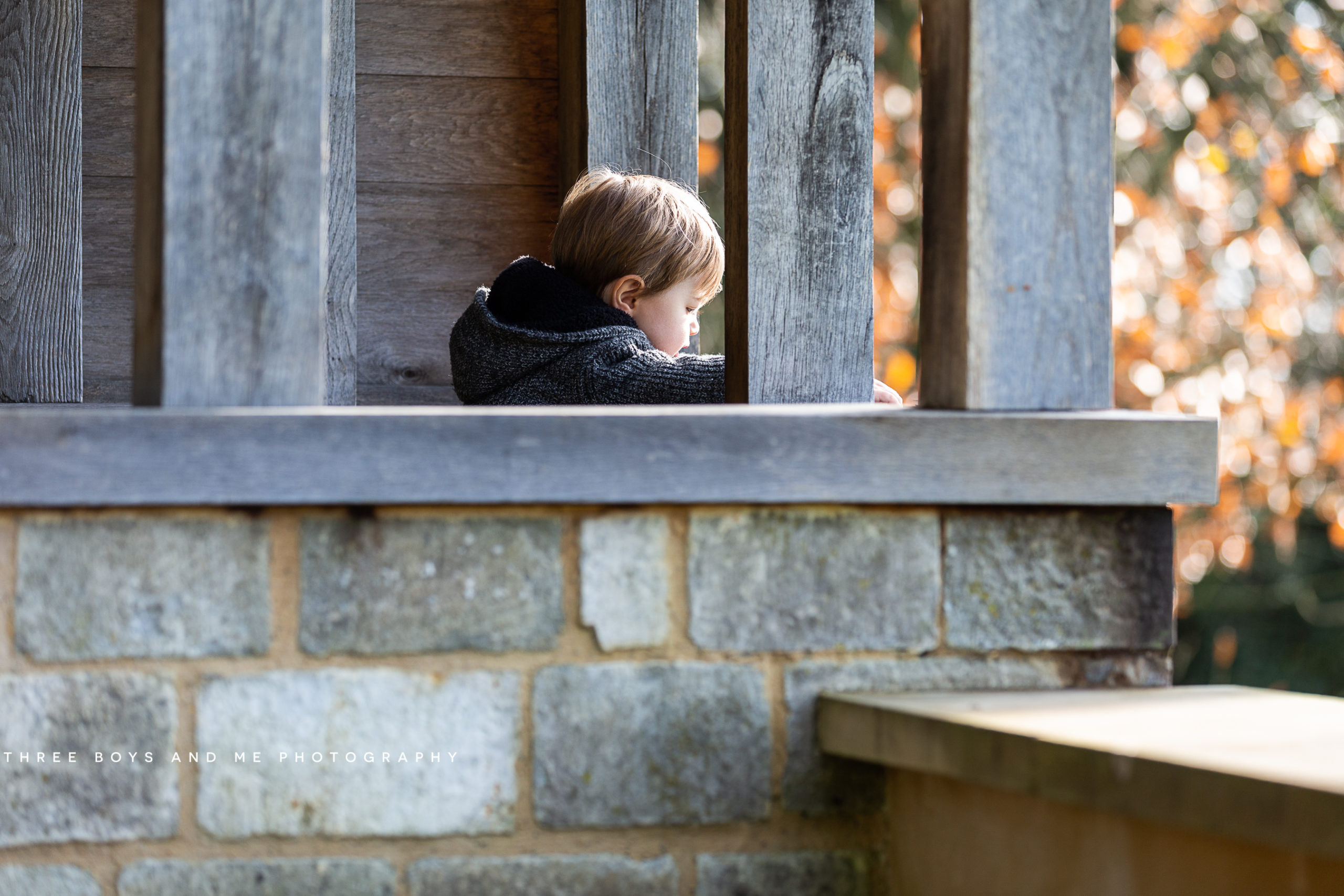 little boy looking through a window at Riverhill Himalayan Gardens in Sevenoaks during his Autumn family photoshoot