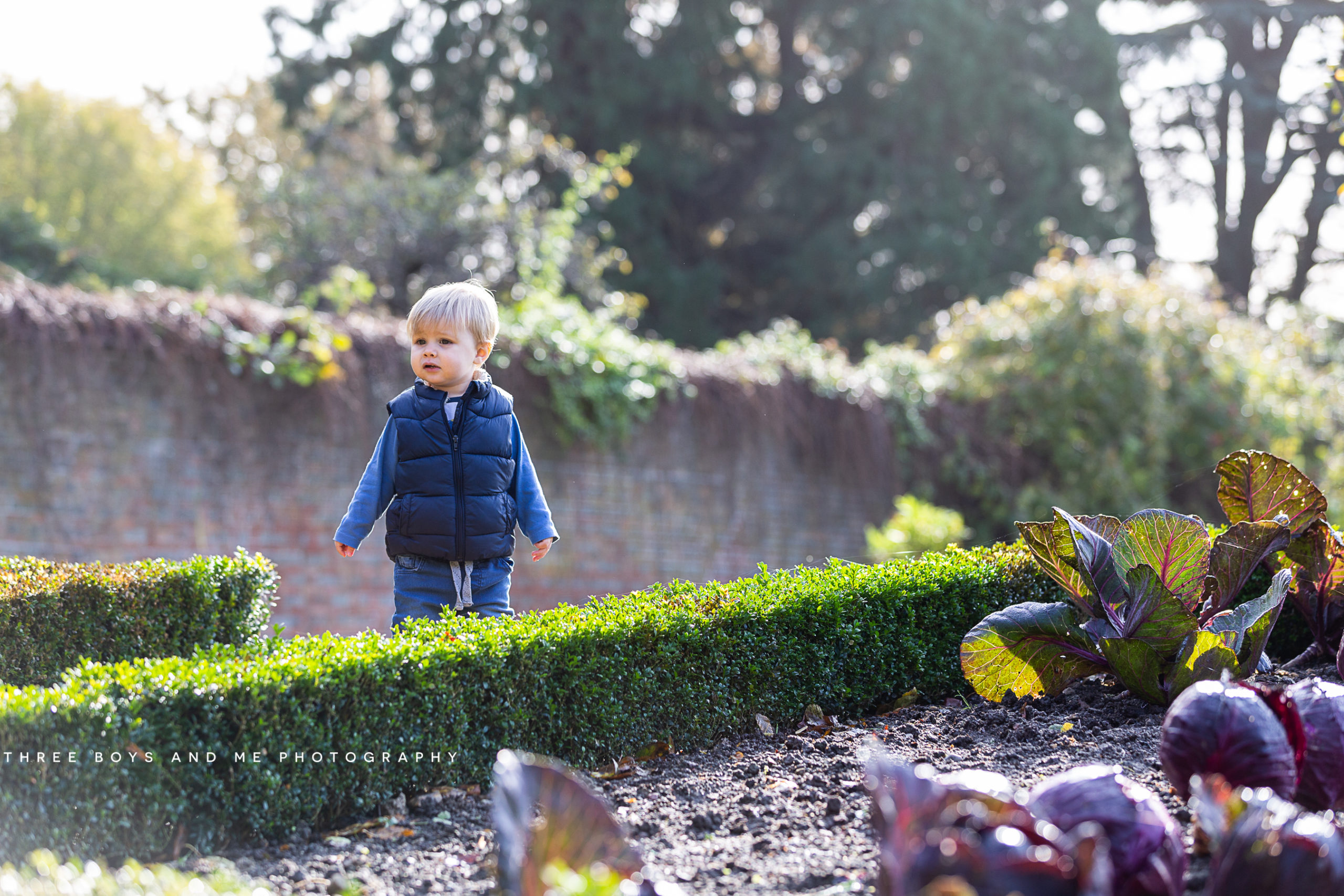 Autumn Mini Shoots 2019 at Riverhill Himalayan Gardens in Sevenoaks 2020 booking now open.