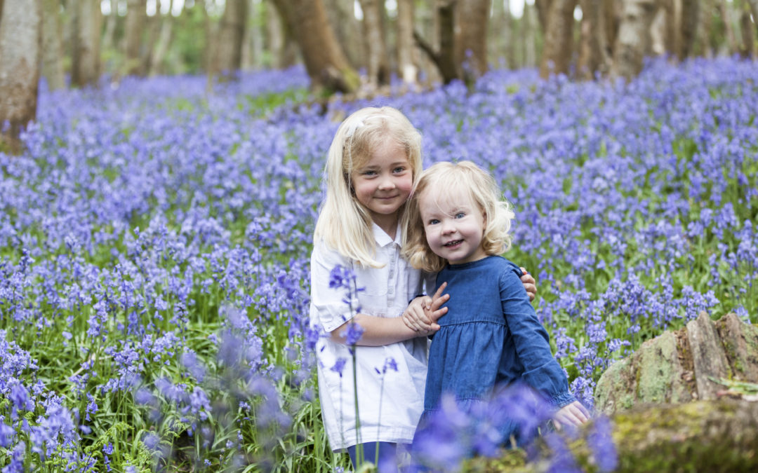 4 crazy days of bluebells 2019 – 2021 dates now booking!